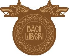 Dacii Liberi Resort & Spa - Maramures - Romania